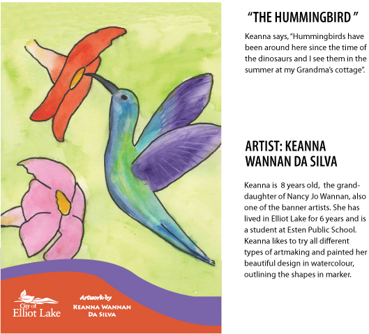 Keanna Wannan Da Silva The Hummingbird